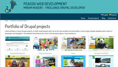 Peacog Web Development